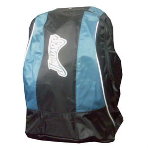 NFL/NCAA BACKPACK