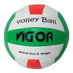 BULK VOLLEYBALL
